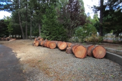 Firewood Rounds Cleanup Grants Pass