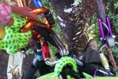 Rope Rigging Climbing